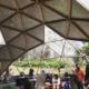 axolotitlan-se-convertira-en-el-primer-museo-nacional-del-ajolote-en-cdmx-4-alt