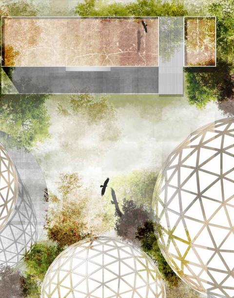 axolotitlan-se-convertira-en-el-primer-museo-nacional-del-ajolote-en-cdmx-alt
